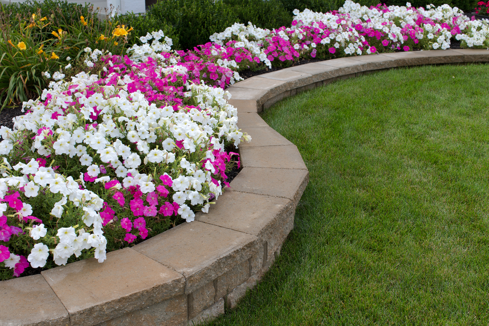 Oklahoma City Lawn Care Maintence